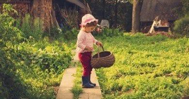 Outside_Garden_Basket_Girl_Wesbite_Copy