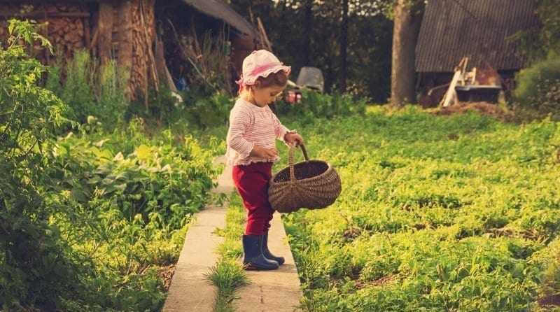 Boost child development through outdoor learning