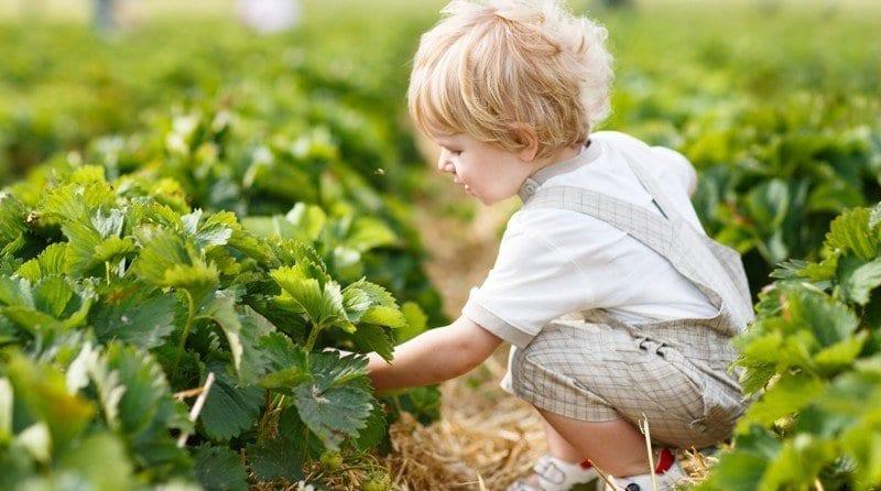 Make your nursery setting greener