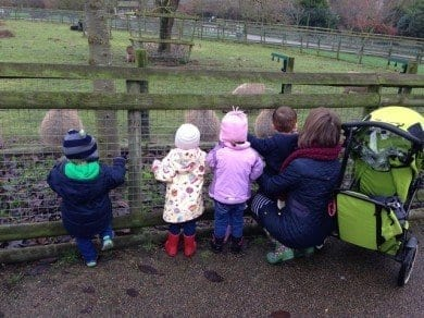 Visiting Howletts Wild Animal Park with the children