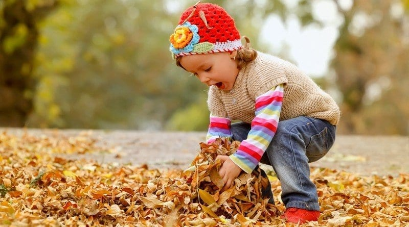 Children playing with leaves