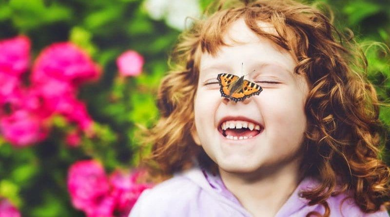The roles animals play in sensory learning experiences for children