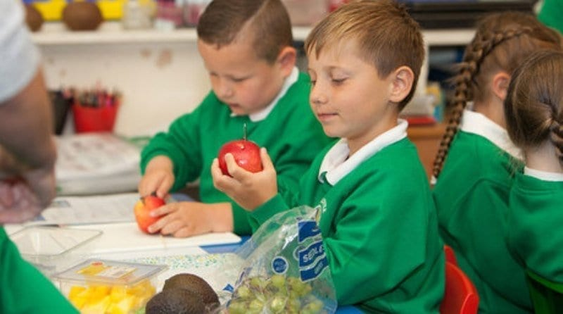 Nurseries urged to register for Healthy Eating Week