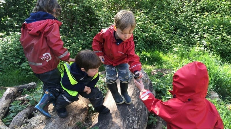 Little Forest Folk – finding joy in the great outdoors