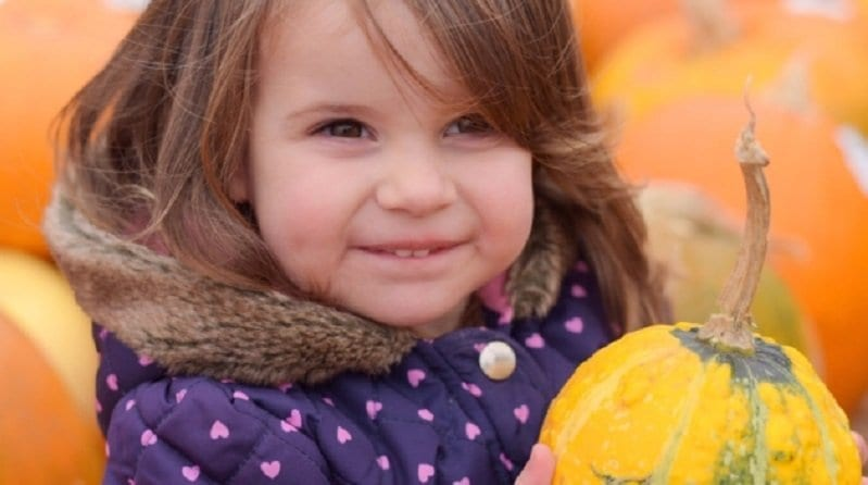 Nursery holds pumpkin party to celebrate new pedestrian crossing