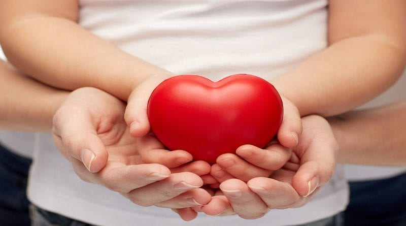 Heart shape in cupped hands