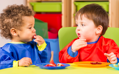 A sensory look at the fussy eater