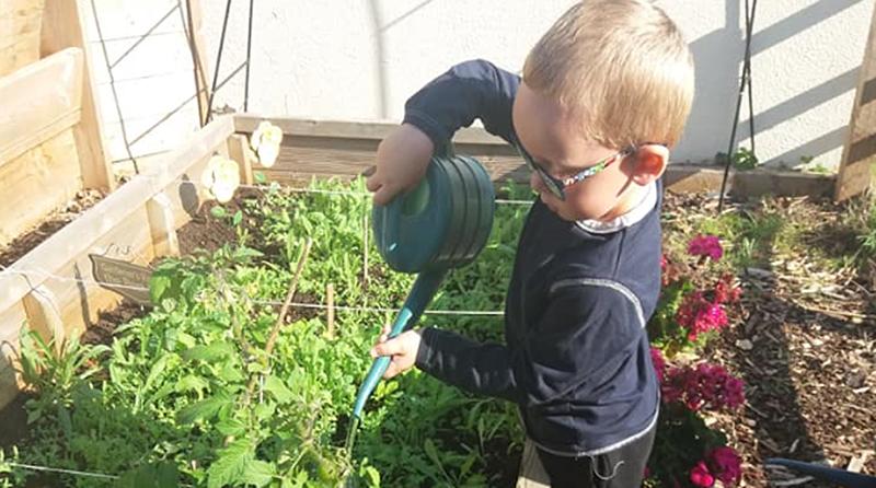 Little Green Fingers at Tops Day Nurseries Salisbury Gardening Club
