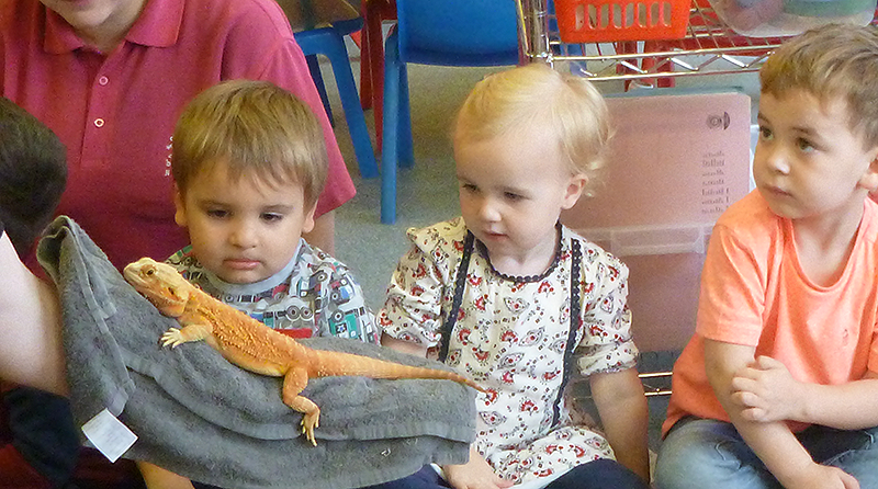 Boys & Girls Nursery celebrate World Animal Day with special visits from ZooLab