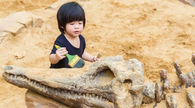 Sensory archaeology craft