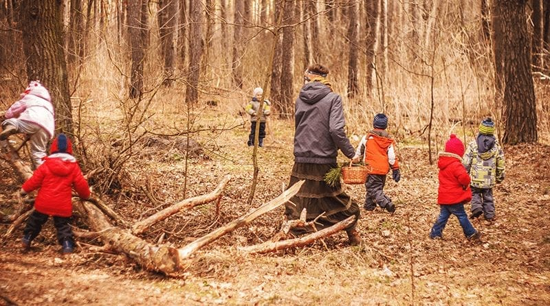 Focus on Forest Schools