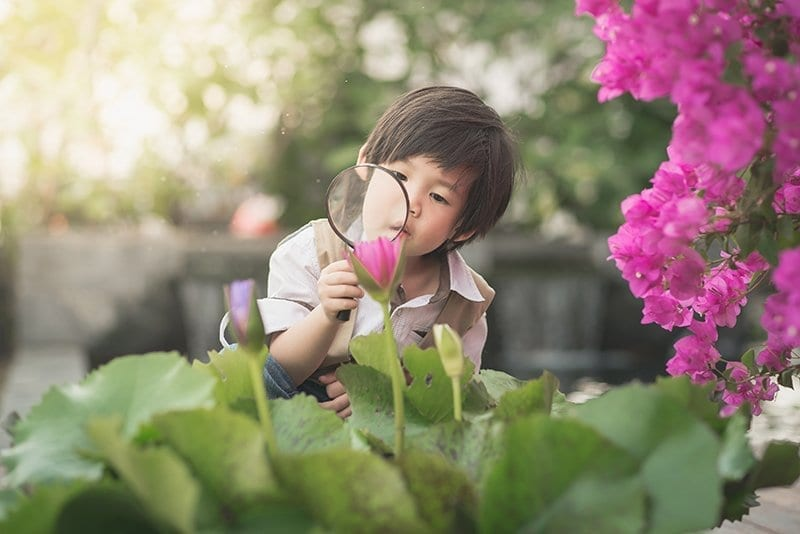 10 benefits of outdoor learning