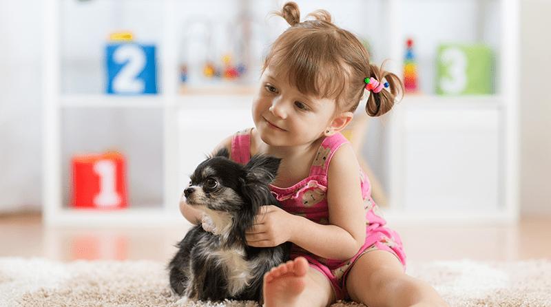 The benefits of animals for children's development